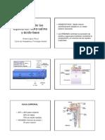 12 - Equilibrio Hidrosalino y Acido Base