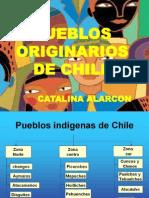 Catalina Alarcon