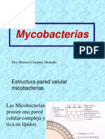 My Co Bacterias