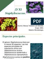 UNIDAD XI - Staphylococcus.