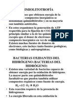 Clase Microb Vii Quimiolitotrofoa