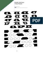 Test Reprezentare Spatiala - Foaie de Raspuns