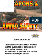 weapons-and-ammo-safety