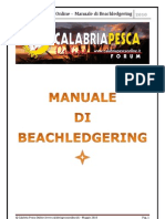 Manuale+di+beachledgering.pdf