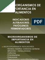 Microorganismos de Importancia en La Industria de Alimentos