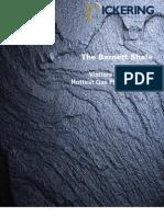 The Barnett Shale Report