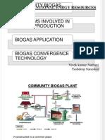Community Biogas Plant