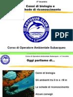 Corso OAS - Biologia marina da 0 a -18 metri