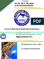 Corso OAS - Biologia marina oltre -30 metri