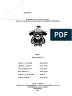Paper Korfis II (Klp 7)