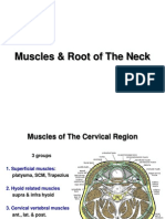 Muscles_Root_of_The_Neck_e-learning.ppt