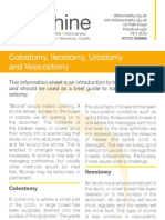 Colostomy Ileostomy Urostomy Vesicostomy