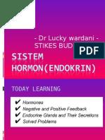 Endokrin System