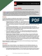 esg_brief_cisco_waas.pdf