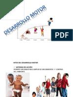 Psicologia Del Desarrollo, Desarrollo Fisico Equipo 1