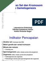02_Gametogenesis_Rev2011