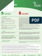 Guia_FVS.pdf