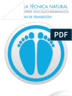Plan Transicion CDM.pdf