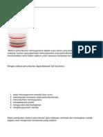 Medium Pertumbuhan Bakteri