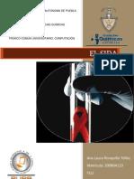 sidainvestigacin-091130074833-phpapp02