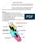 3. FORMATIUNEA RETICULATA.docx