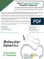 13 Molecular Genetics Transcription Translation VCBC