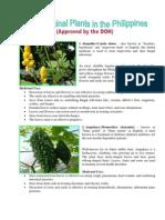 10 Medicinal Plants