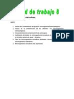 U.T 8 Microorganismos marcadores