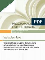 programacinestructuradalaurarobles-120315005146-phpapp01