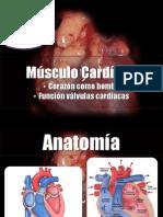 Cap 9, Musculo Cardiaco