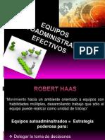 EQUIPOS AUTOADMINISTRADOS EFECTIVOS 2