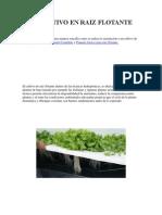 EL CULTIVO EN RAIZ FLOTANTE 2.docx