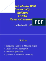Causes of Low Well Productivity Wellbore and or Reservoir Issues