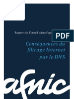 CS Consequences Du Filtrage Internet Par Le DNS