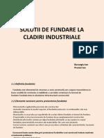 Burungiu, Prunici, Solutii de fundarela cladiri industriale.pdf