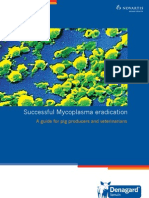 Eradication Guide Mycoplasma Hyopneumoniae