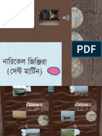 Bangla All Smaller2 Part1