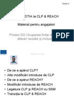 SUBSTANTE CHIMICE = Tranzitie CLP-REACH.pdf