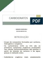 Aula 3 Carboidratos.ppt