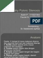 Hipertrofi Pylorus Stenosis