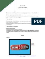 FisioCardCap12_VASOS_SANGUINEOS