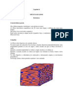 FisioMuscCap04_MUSCULOS_LISOS