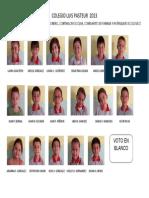 Consejo de Estudiantes y la Democracia Escolar año 2013