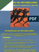 Amomoacidos AulaIntMet.ppt