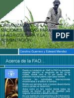 FAO[1]FINAL
