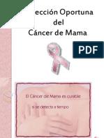 Detección Oportuna del Cáncer de Mama (LHV)