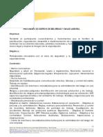 Programa de Gestion de Seguridad y Salud Laboral