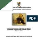 Insectos Bioindicadores de la calidad del agua en la Localidad de Pítales, Mpio de Tecpán de Galeana. Guerrero, México