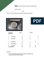Formulario ANTIBIOGRAMA 2 Feito