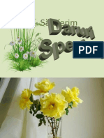 Daruri_speciale, h (1)